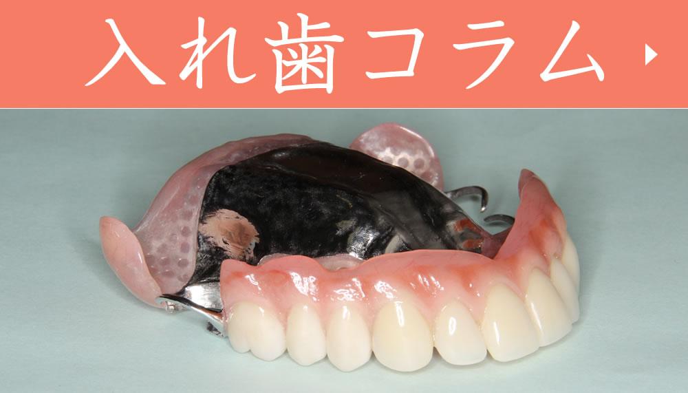入れ歯コラム